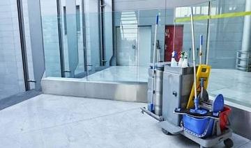 Palmacedar Cleaning